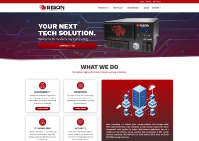 Bison Computing